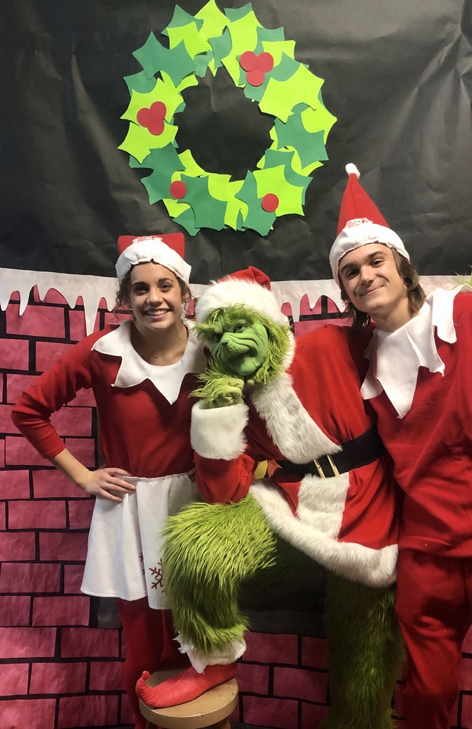 The Grinch & Elves on the Shelf!